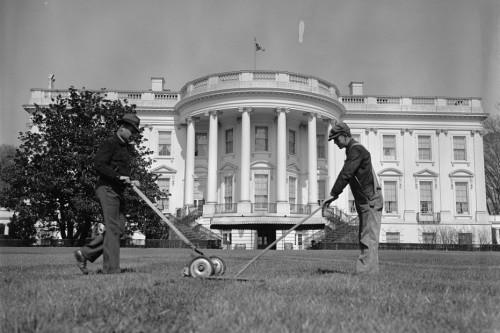 Mowing_&_raking_White_House_lawn26268v
