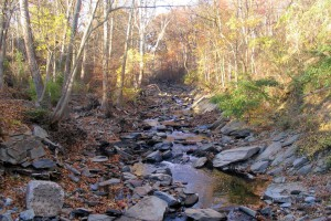 1024px-Little_Falls_Branch,_Brookmont_MD
